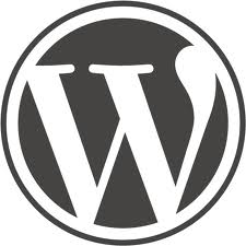 Wordpress-Skylight-interactive-frontend-icons